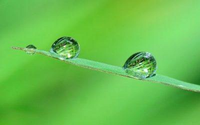Finding Balance, a Reflection